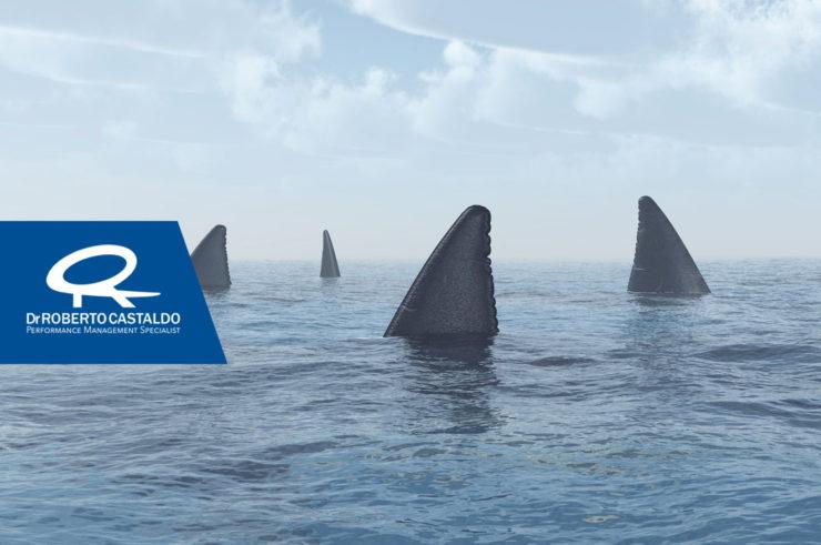Strategia Oceano Blu il libro per vincere in un mercato di squali